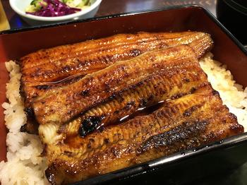 0620Kikukawa2.JPG