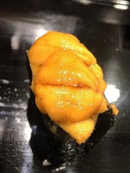 09ウニ.JPG