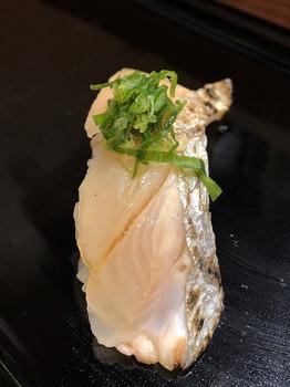 13太刀魚.JPG