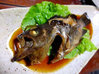 磯魚_メバル.JPG